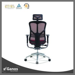 china ergonomic full mesh popular europe office chair jns 501