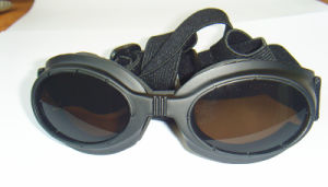 Black Pet Glasses for Dogs, Sunglasses Dog, Dog Eyewear pictures & photos