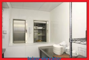 Home Food Dumbwaiter Lift Elevator, 320kg, 400kg pictures & photos