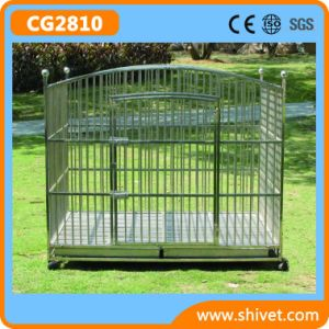 Stainless Steel Dog Cage (CG2810) pictures & photos