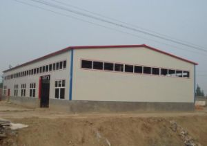 Tailong Construction Light Steel Structure Workshop