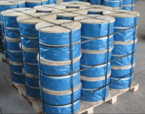Galvanized Wire Rope Tongguan Brand pictures & photos