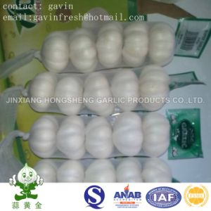 Chinese Pure White Garlic Size 5.0cm 200gram Small Packing