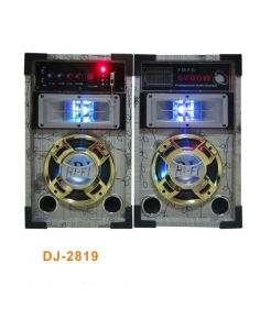 Cheap Price Professional Active Speaker with LED Light (DJ-2819)