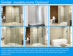Modern Rectangular Frame Cubicle Sliding Glass Shower Wall pictures & photos