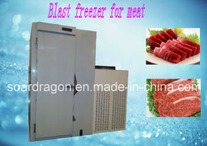 60kg Blast Freezer for Meat with One Trolley pictures & photos