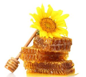 Various Flower Honey