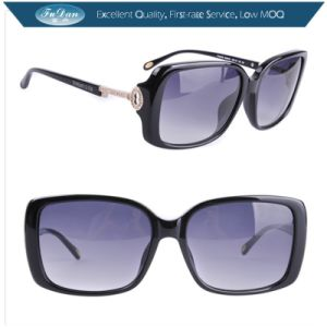 TF4043b Italian Brand Women Sunglasses 2013 pictures & photos