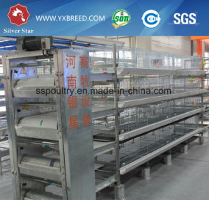Automatic Poultry Layer Broiler Chicken Cage (H4L80) pictures & photos
