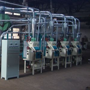 Small Wheat Flour Milling Machinery