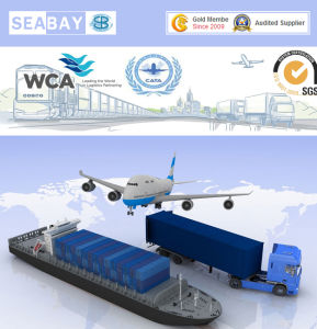 Ocean and Air Freight Forwarder pictures & photos
