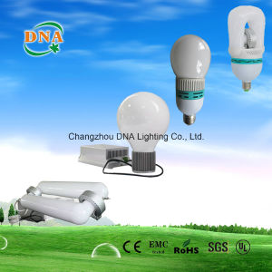 Ballast for Induction Lamp