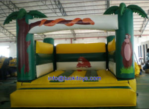 Various Types Inflatable Bouncer for Kids (A165)