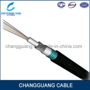 China GYTA33 Multicore Optical Fiber Cable Stranded Loose Tube Steel ...