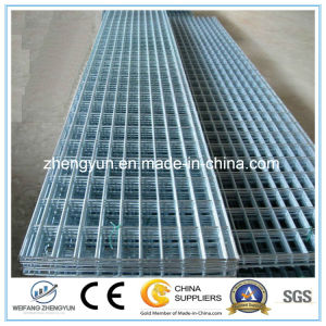 Wholesale! High Quality Galvanized Welded Wire Mesh Panel