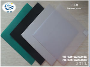 Waterproofing LDPE HDPE Pet PVC Geomembrane 0.2mm-4.0mm Thickness