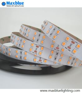 2835 High Brightness 144LEDs/M Double Row LED Strip pictures & photos