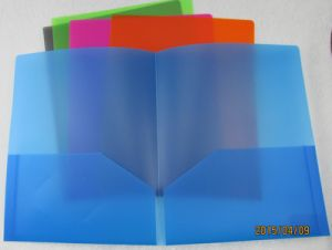 Customized File Folder in Two Pockets (F039) pictures & photos