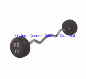 Gym Equipment Fitness Equipment Exercise Barbell (Curl Bar)