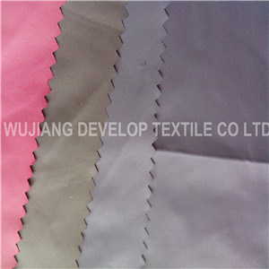 272t Twill Polyamide Fabric with Cired for Garment Fabric (DN3004)