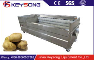 Commerical Fruit and Vegetable Brush Washing Machine with Different Models pictures & photos