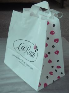 Custom Printed Carrier Bags for Flowers (FLL-8362)