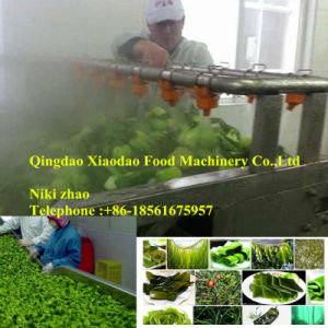 Blanching Machine Vegetable Blancher Seaweed Blanching Machine pictures & photos