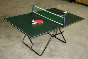 Folding Table Tennis Table (TE-13) pictures & photos