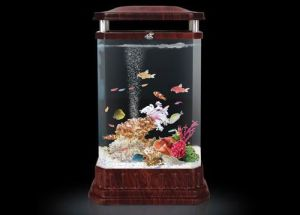 Cylindrical Decoration Aquariums, Cylindrical Fish Tank (1460*Diameter 780mm)