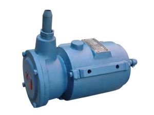 Explosion-Proof Motor Matching Blower (YBF2-B) pictures & photos