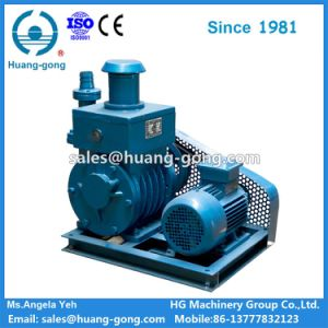 Rotary Vane Vacuum Pump (2X) pictures & photos