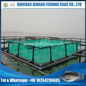 HDPE Bracket Fish Farming Net Cage for Tilapia Farming pictures & photos