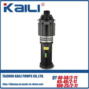 8Stage QY Oil-Filled Submersible Pump Clean Water Pump (Multistage)mine pump pictures & photos