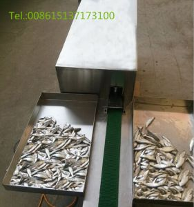 Fish Killer/Stainless Steel Automatic Fish Killing Machine