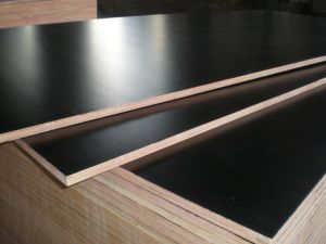 L56 Poplar Plywood/Black Film Faced Plywood pictures & photos