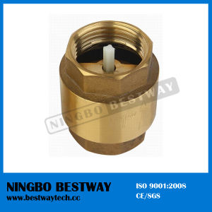Brass Vertical Check Valve with Plastic Core pictures & photos
