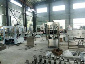Full Automatic Fruit Juice Beverage Filling Machinery of Glass Bottle