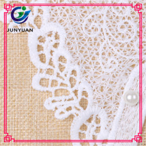 Fancy White Floral Motifs Patterned Neck Patches Collar Lace pictures & photos