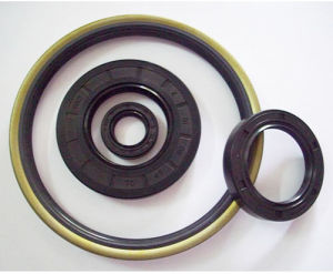 Oil Seal (O ring seal)