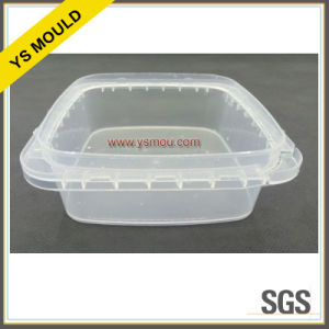 2 Cavities Plastic Food Preservation Box with Lid Mold pictures & photos