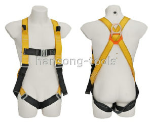 Safety Harness (SD-113) pictures & photos