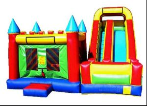 Inflatable Jumping Castle for Amusement Park