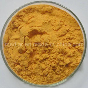 Ningxia Famous Goji Berry Powder with Best Quality