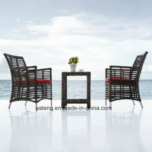 Popular Glassic Design Outdoor Furniture of Dining Chair with Table by 6-8 Person (YT620) pictures & photos
