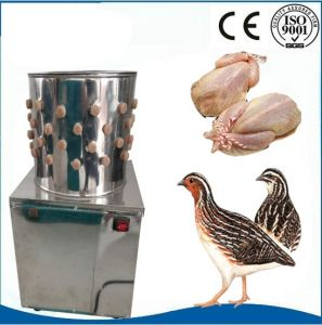 Automatic Stainless Steel Poultry Plucking Machine