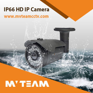 China CCTV IP Video Camera 1024p 1.3MP IP66 Mvt-M1124c pictures & photos