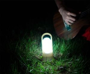 Smart USB Passive Infrared Optical Induction Night Sensor Light Flashlight pictures & photos