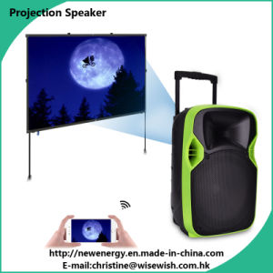 PRO High Power Active Projection Speaker Cabinet with Wireless Microphones