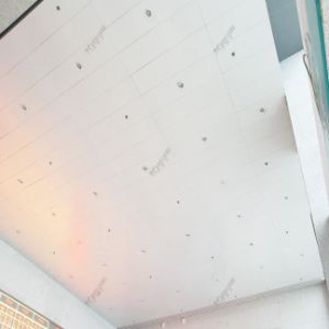Modern Looking PVDF Coating Ceiling Aluminum Curtain Wall Panel with Fireproof 20 Year Guarantee pictures & photos