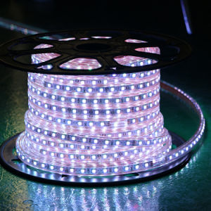 Wathet Color 60LEDs SMD5050 220V IP65 LED Rope Light pictures & photos